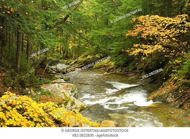 Texas Brook, Texas Falls Recreation Area, Green Mountain National Forest, Vermont