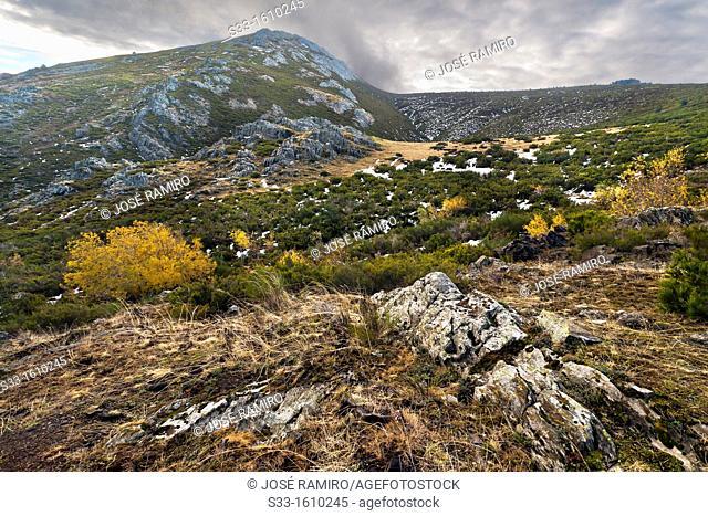 Granero peak in the Sierra Norte  Guadalajara  Castilla la Mancha  Spain