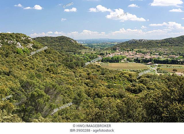 Typical Garrigue or scrubland landscape in southern France, GR6 long-distance hiking trail between Saint-Bonnet-du Gard, at the back, and Pont du Gard