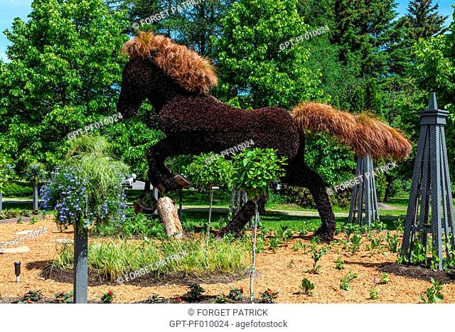 VEGETAL SCULPTURE OF A GALLOPING HORSE, MOSAICULTURE, BOTANICAL GARDEN, EDMUNDSTON, NEW BRUNSWICK, CANADA, NORTH AMERICA