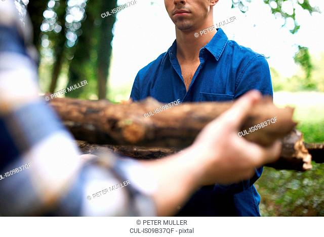 Cropped view of man handing friend firewood