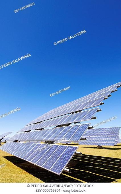 Solar field with blue sky in Sadaba, Saragossa, Aragon, Spain