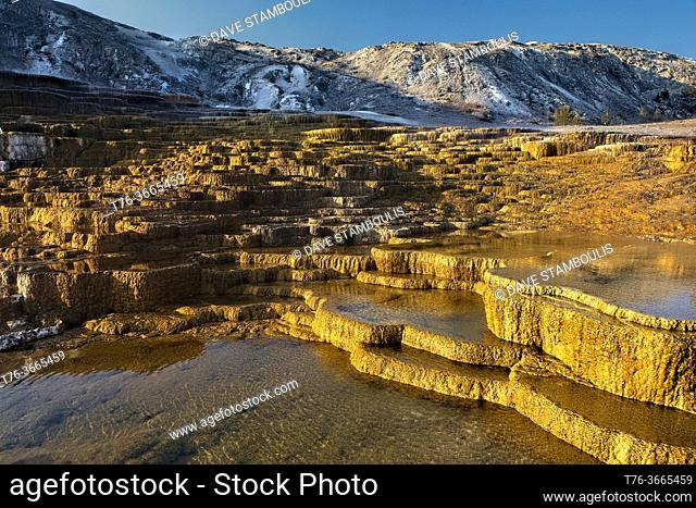 Mammoth Hot Springs, at sunrise, , Yellowstone National Park, Wyoming, USA