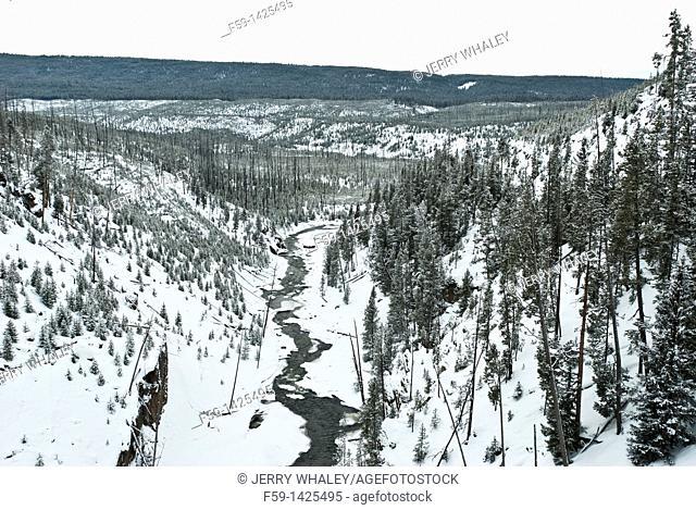 Winter, Yellowstone NP, WY