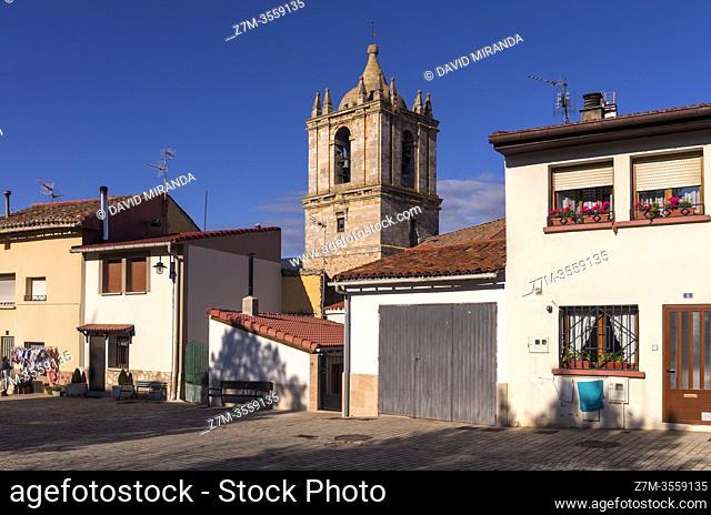 Iglesia de la Asunción de Nuestra Señora. Santa Cruz de Campezo. Ã. lava. País Vasco. España