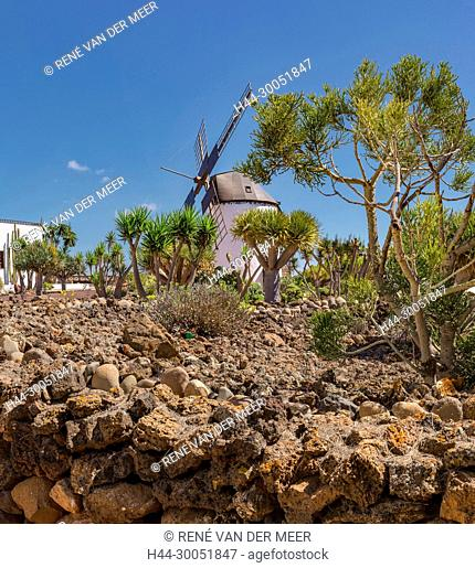 Museo Molino de Antigua, windmill, Antigua, Spain Spain