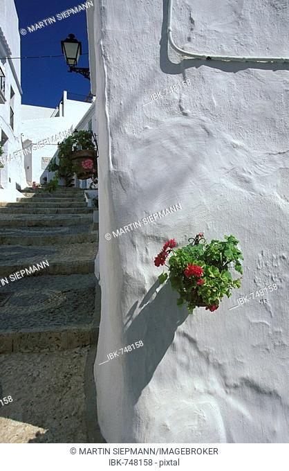 Detail, white houses in the town of Frigiliana, Axarquía, Málaga Province, Andalusia, Spain