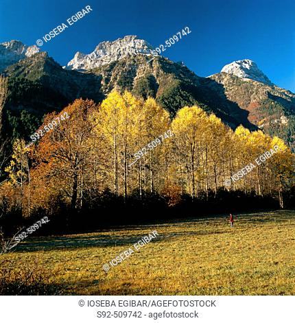 Pyrenees valley. Huesca province. Aragon. Spain