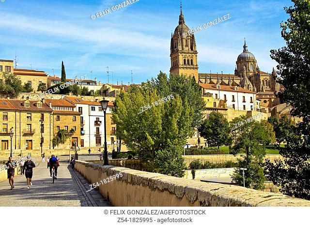 Roman bridge and Gothic Cathedral Salamanca, Spain