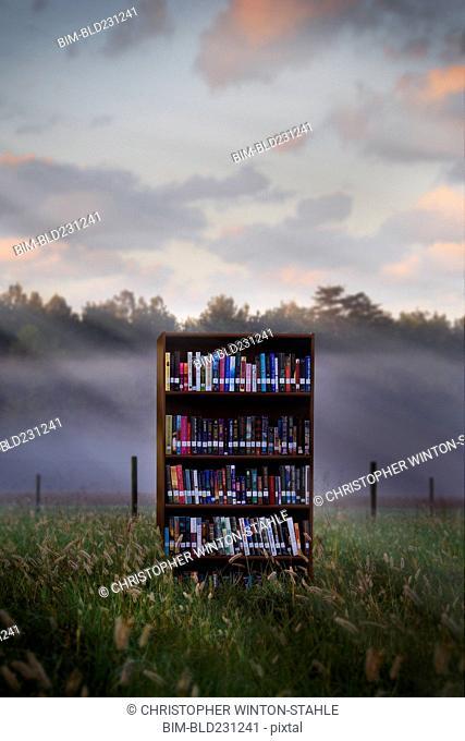 Books in bookcase in field