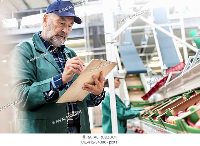Manager with clipboard inspecting apples in food processing plant