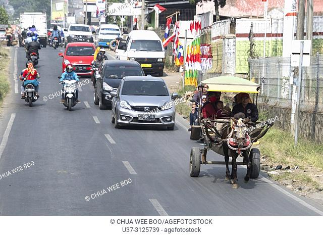 Horse pulling a taxi cart filled with people in Bandung countryside road, Ciwidey, Java, Indonesia