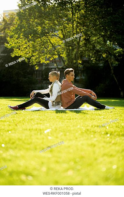 Young couple sitting back to back on a meadow