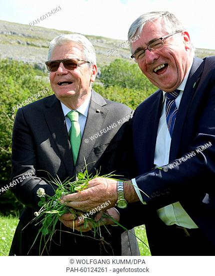 Irish Minister of State for Food, Horticulture and Food Safety, Tom Hayes (r), shows juicy grass for raising cattle to German President Joachim Gauck on the...