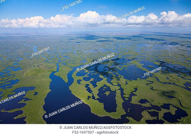 Aerial view, Everglades National Park, Florida, USA