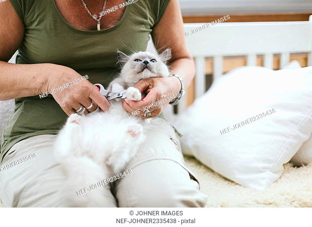 Woman cutting cat claws