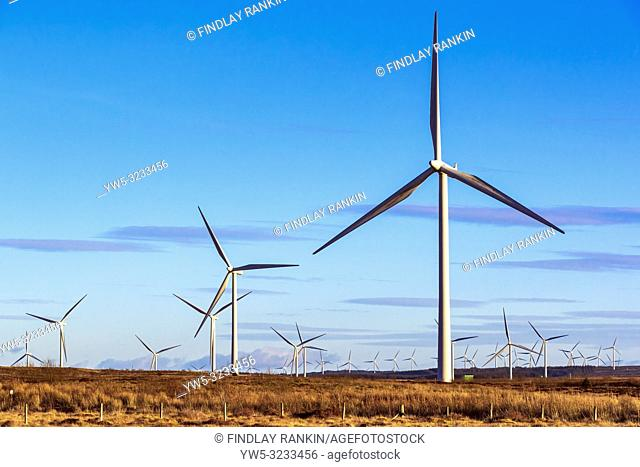 Whitelee windfarm, owned by Scottish Power renewables, a part of the Spanish company Iberdrola, is the largest onshore windfarm in the UK with 215 turbines