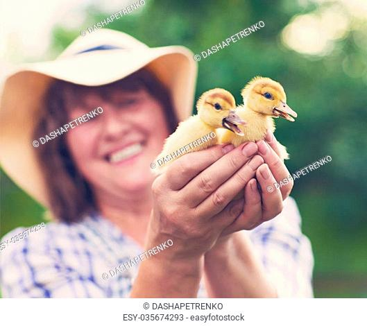 Middle age caucasian woman with yellow duckling outdoors