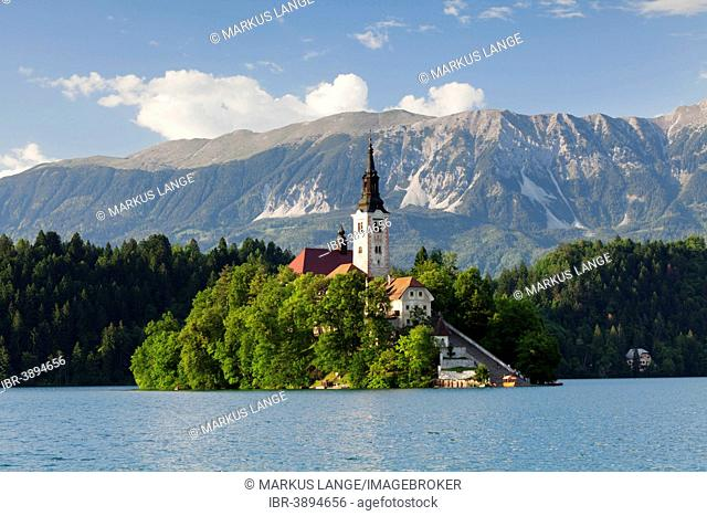 Bled island with St. Mary's Church, Lake Bled, Bled, Slovenia