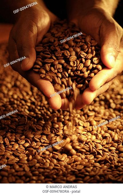 one person taking some coffee grains