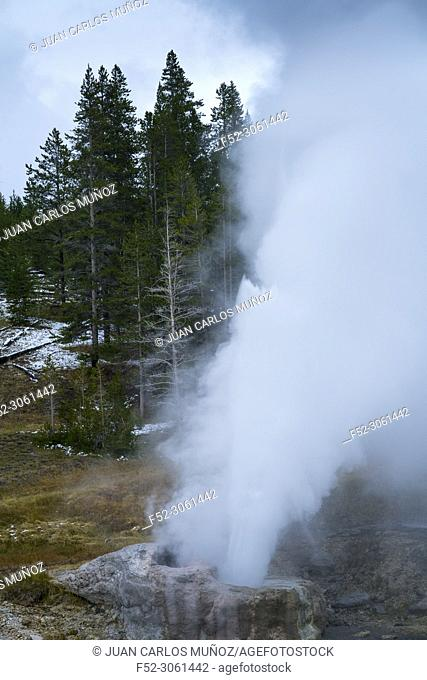 Geyser and Hot Spring, Yellowstone National Park, Unesco World Heritage Site, Wyoming, Usa, America