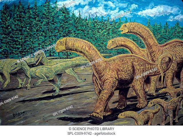 Patagosaurus right herd and Piatnitzkysaurus floresi left herd. Patagosaurus was a herbivorous dinosaur, Piatnitzkysaurus floresi was a carnivorous dinosaur