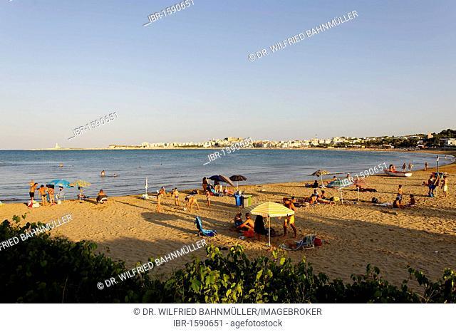 Vieste, bay with sandy beach, Gargano, Apulia or Puglia, South Italy, Europe