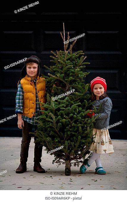 Girl and boy holding christmas tree