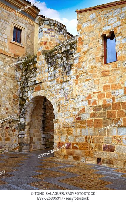 Zamora Obispo arch door near Cathedral in Spain
