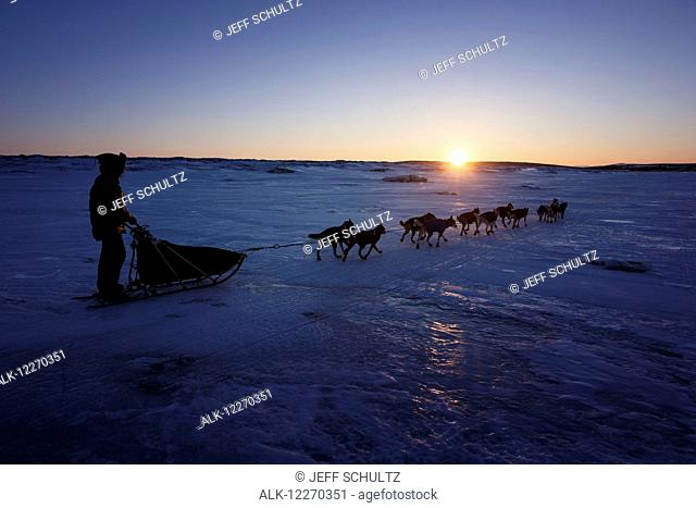 Joar Leifseth Ulsom on the sea ice in front of Koyuk during the Iditarod Sled Dog Race 2014