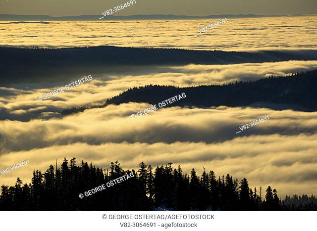 Fog from Timberline, Mt Hood National Forest, Oregon