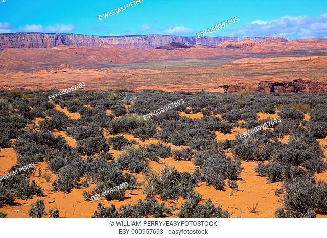 Orange Sand Painted Desert Green Sagebrush Colorful Red Colorful Vermillion Cliffs Glen Canyon Page Arizona