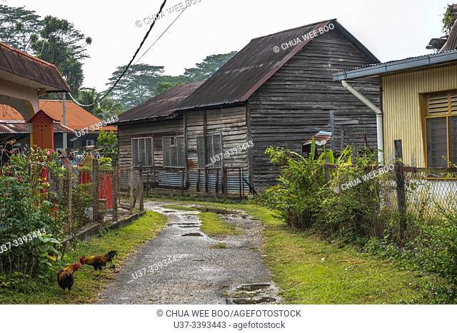 An old wooden chinese house in Bukit Koman, Raub, Pahang, Malaysia