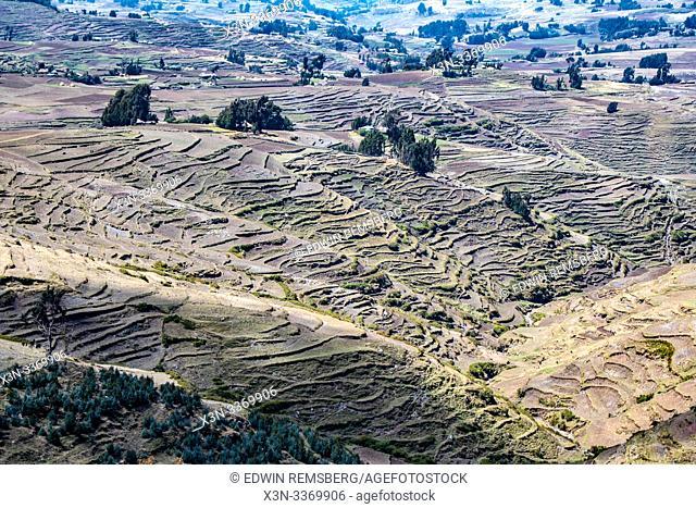 Hillsides terraced for farming purposes near Ankober, Ethiopia