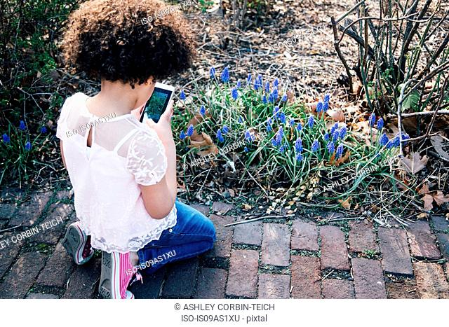 High angle rear view of girl kneeling using smartphone to take photograph of flowers