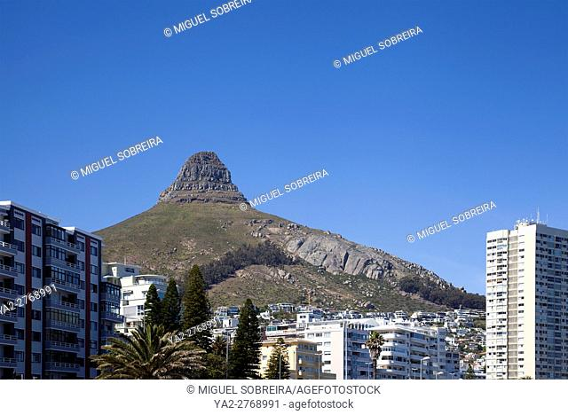 Buildings Along Sea Point Promenade with Lions Head Behind - Cape Town - South Africa