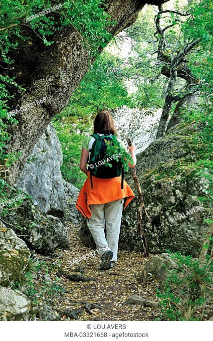 Spain, Navarre, journeyler in the Sierra de Leyre