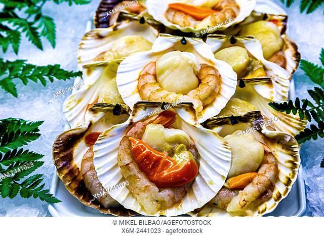 Pilgrim's scallop with seafood. Santiago de Compostela. La Coruña, Galicia, España
