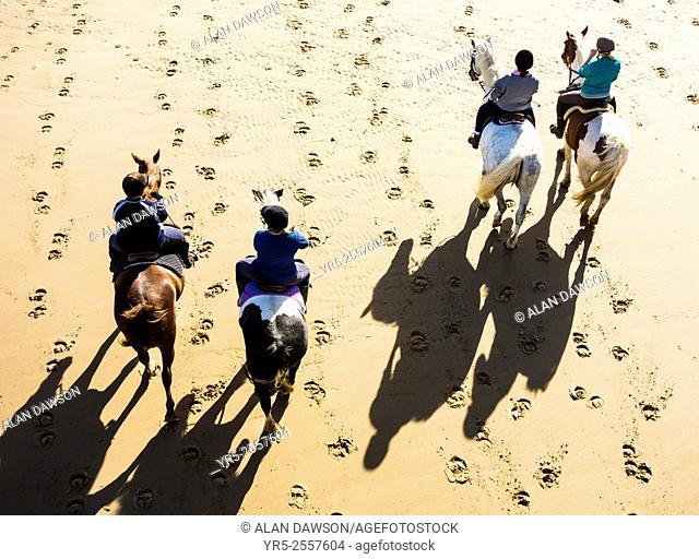 Saltburn by the sea, North Yorkshire, England, United Kingdom. Horses fromlocal riding school on Saltburn beach