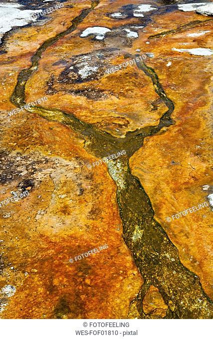 USA, Yellowstone Park, Hot spring