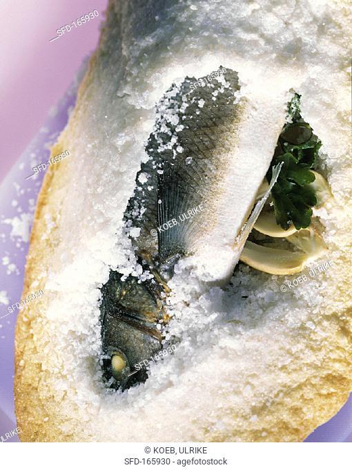 Sea perch in salt crust
