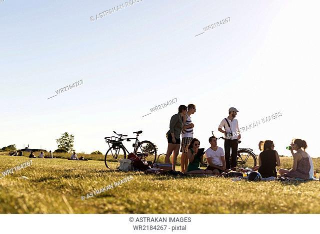 Friends enjoying picnic at park