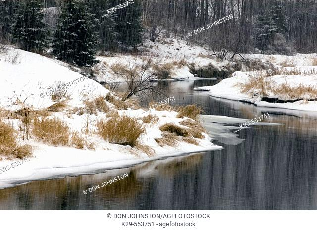 Shores of Junction Creek in snowstorm. Lively, Ontario, Canada