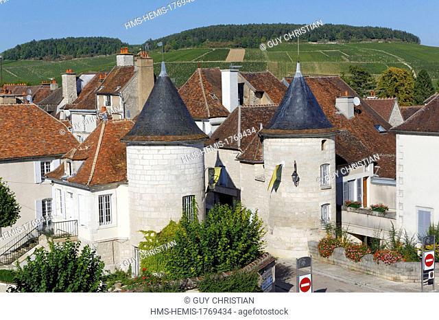 France, Yonne, Chablis, Noel door, porte Noel