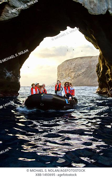 A dawn Zodiac tour of Boatswain Bird Island just off Ascension Island in the southern tropical Atlantic Ocean  MORE INFO Ascension Island is a remote volcanic...