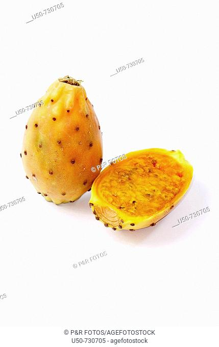 Indian fig, Opuntia ficus-indica, Cactaceae
