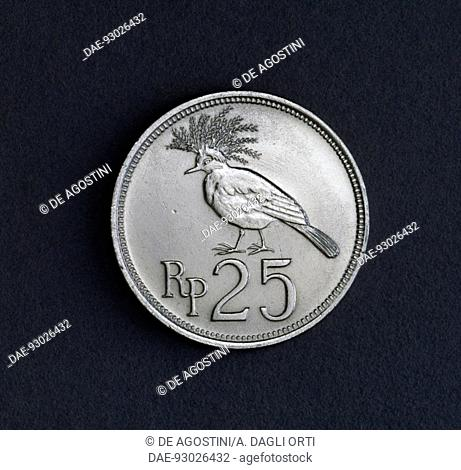 25 rupiah coin, 1971, reverse, the Victoria crowned pigeon (Goura victoria). Indonesia, 20th century