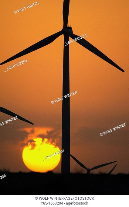 Windfarm, La Muela, Zaragoza province, Spain