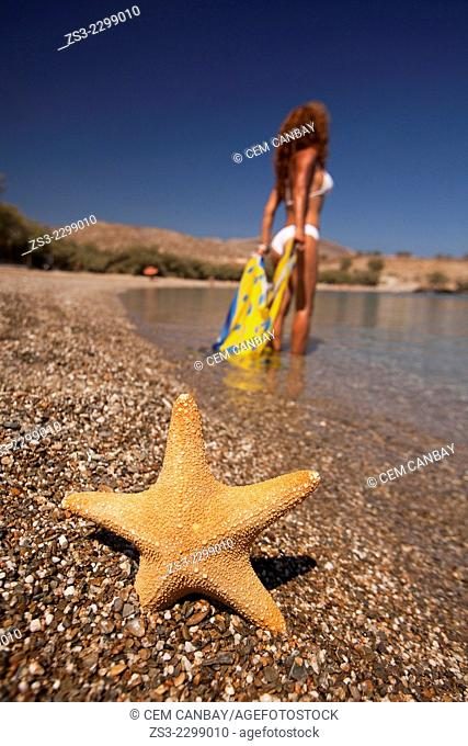 Starfish lying on the sand at Agios Georgios beach with a woman in bikini at the background, Folegandros, Cyclades Islands, Greek Islands; Greece, Europe