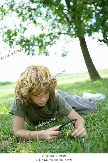 Boy lying in grass, looking through magnifying glass at flower